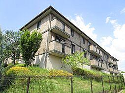 リンデンバウム C棟[1階]の外観