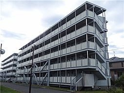 千葉県船橋市松が丘5丁目の賃貸マンションの外観