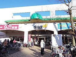 [一戸建] 東京都小平市小川西町3丁目 の賃貸【/】の外観