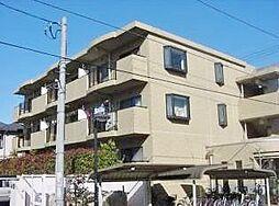 埼玉県さいたま市南区大字大谷口の賃貸マンションの外観