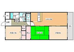 大阪府羽曳野市野々上3の賃貸マンションの間取り