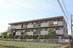 プレステージ大和田[205号室]の外観