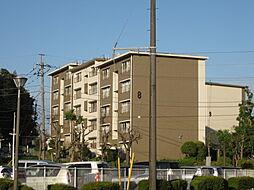 UR梨香台[8-203号室]の外観