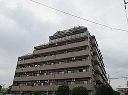 ライオンズヒルズ松戸[1階]の外観