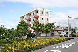 TAKEYARIハイツII[203号室]の外観
