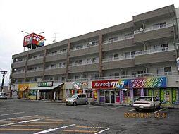 宮崎県小林市大字堤の賃貸マンションの外観