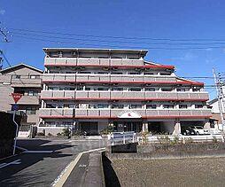 京都府京都市西京区桂徳大寺北町の賃貸マンションの外観