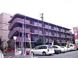 ベルデ堺東[406号室]の外観