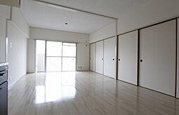 ラフォーレ城南[501号室]の外観