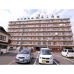 南薫ハイツ[7階]の外観