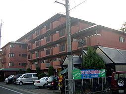 京都府京都市山科区竹鼻サイカシ町の賃貸マンションの外観