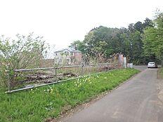 南側前面道路からの撮影です。