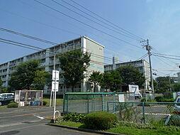 藤沢西部[5F号室]の外観