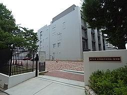 ベルコモン神戸[502号室]の外観