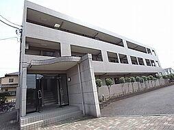 ロイヤルガーデン(柳沢)[1階]の外観