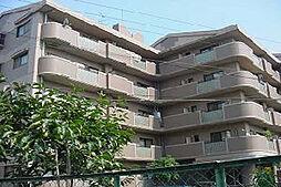 サニープレイスアオヤマ[3階]の外観