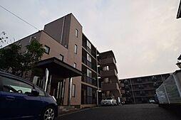 千葉県市川市大野町3丁目の賃貸マンションの外観