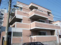 京都府京都市西京区下津林番条の賃貸マンションの外観