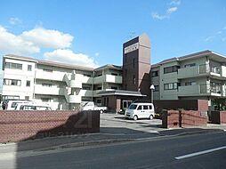 ニューシャトー長岡[1階]の外観