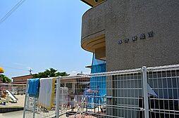 諏訪幼稚園(283m)