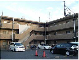 神奈川県横浜市南区永田台の賃貸マンションの外観