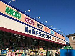 B&Dドラッグストア(西春店) 徒歩15分(1130m)