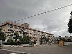 那珂市立芳野小学校 2000m