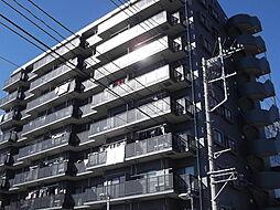 埼玉県さいたま市中央区大字下落合の賃貸マンションの外観