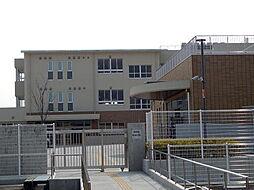 小学校弥富市立日の出小学校まで905m