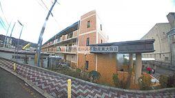 STマンション[1階]の外観