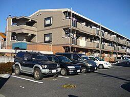 埼玉県三郷市鷹野3丁目の賃貸マンションの外観