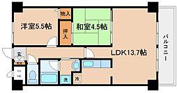 兵庫県神戸市長田区池田広町の賃貸マンションの間取り