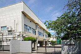 板橋区立桜川中学校(409m)