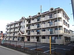 サンクレスト武蔵藤沢[407号室号室]の外観