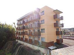 Sパレスカメヤマ[4階]の外観