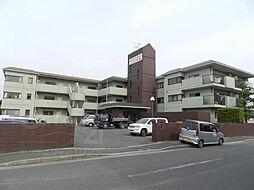 ニューシャトー長岡[207号室]の外観