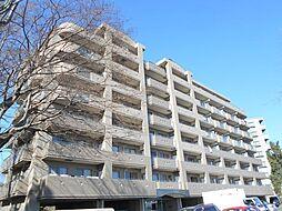 ヒルズ M1[4階]の外観
