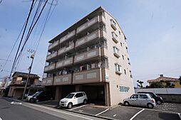 フレクション松山東石井[507 号室号室]の外観