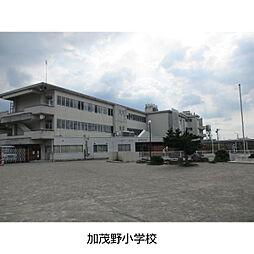 小学校加茂野小学校まで672m