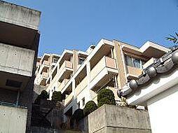エーワイハイツ寺塚[203号室]の外観