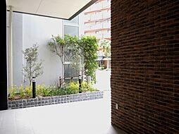 Modern Palazzo 警固(モダンパラッツォ警固)[6階]の外観