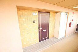 玄関写真です。管理が行き届いたマンションです。