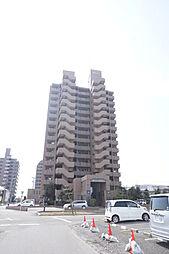稲沢市長束町観音寺田