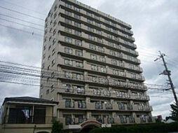 トーカンマンション歯大通り弐番館[2階]の外観