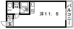 シィダーヴィレッジ[208号室号室]の間取り