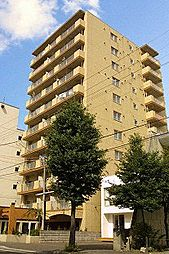 チサンマンション円山III[8階]の外観