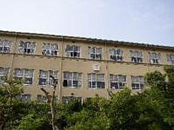 ハイケンスライフ真法院[8階]の外観