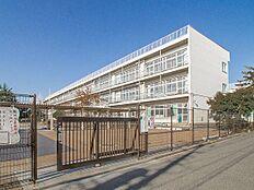 小学校 290m 東久留米市立第一小学校