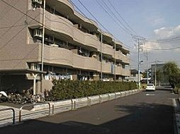 埼玉県久喜市青毛3丁目の賃貸マンションの外観