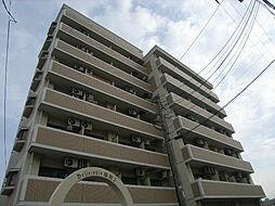 ベルトピアエグゼ福岡[5階]の外観